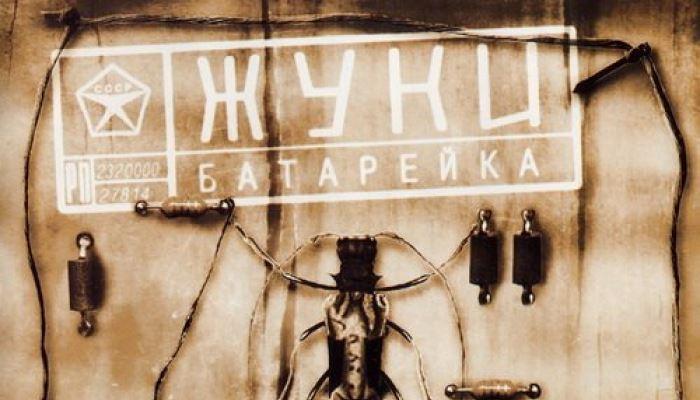 Смысл песни жуки села батарейка