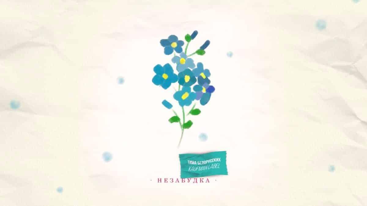 Незабудка Тимы Белорусских смысл песни