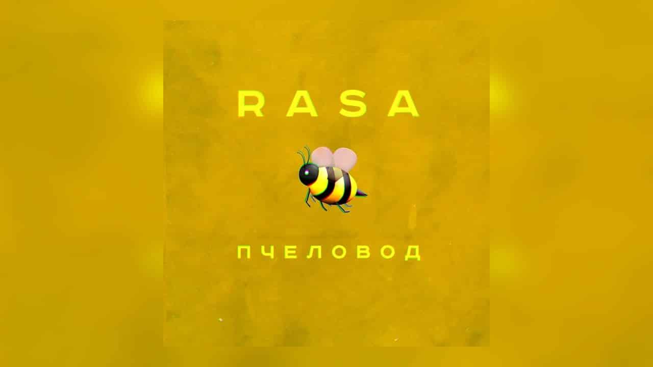 Смысл песни Пчеловод - RASA