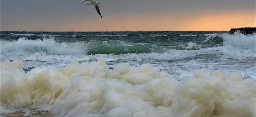 Смысл песни О море море (Синяя вечность)