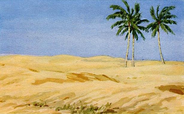 Смысл стихотворения Лермонтова - Три пальмы