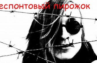 """Смысл песни """"Беспонтовый пирожок"""" группы """"Гражданская оборона"""""""