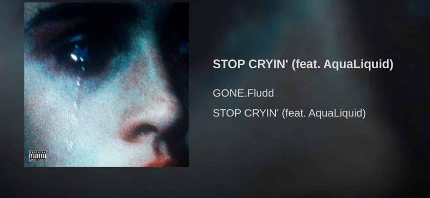 "Gone Fludd и AquaLiquid ""Stop cryin"" - смысл песни"