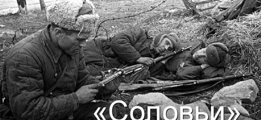 """Смысл песни """"Соловьи"""" автор Алексей Фатьянов"""