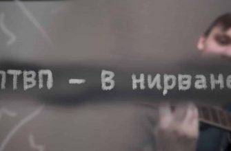 """Смысл песни группы """"ПТВП"""" под названием """"В Нирване"""""""