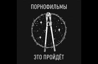 """Смысл песни """"Уроки любви"""" панк-рок группы """"Порнофильмы"""""""