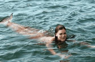 В какой серии H2O Шарлотта превратилась в русалку