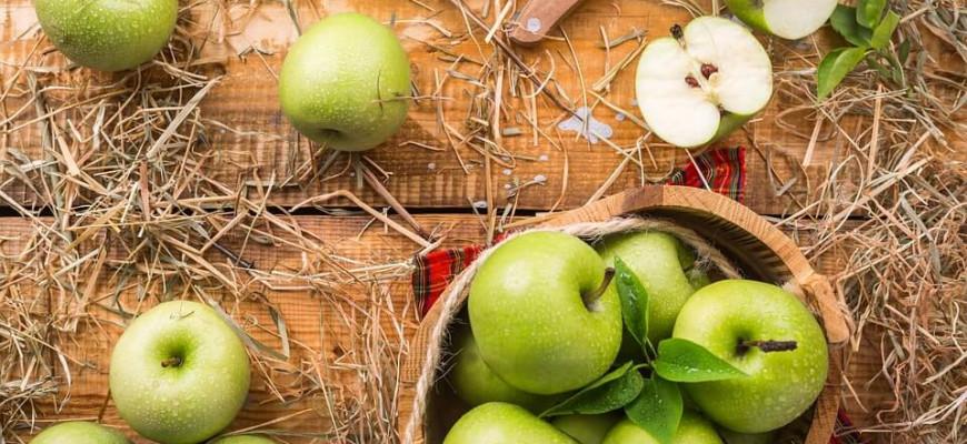 Проблематика рассказа «Антоновские яблоки» Бунина