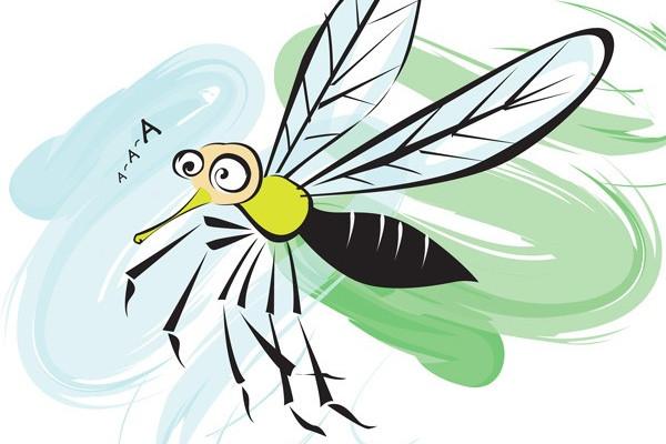 """Смысл пословицы """"Комар носа не подточит""""?"""