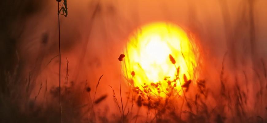 В чем заключается смысл пословицы «Утро вечера мудренее»?