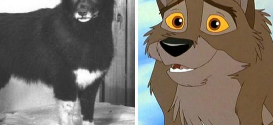 Как называется мультфильм про собаку по кличке Балто