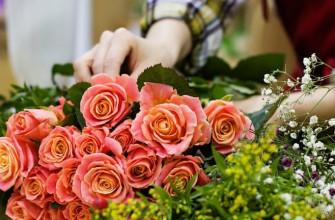 Значение и смысл пословицы «Где цветок там и медок»