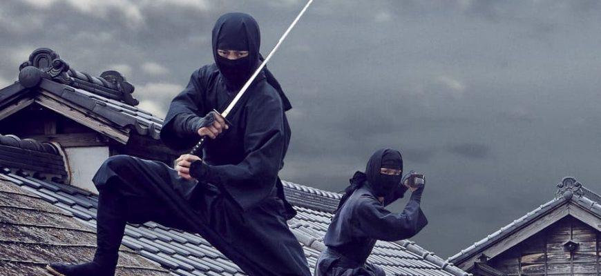 Список лучших фильмов про ниндзя