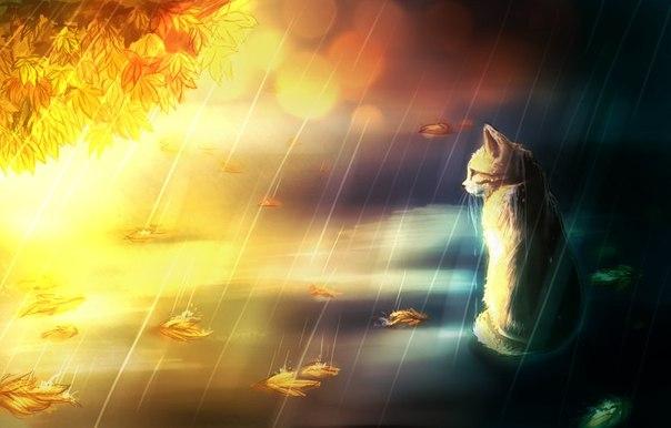 """Смысл произведения """"Кошка под дождем"""" Эрнеста Хемингуэя"""